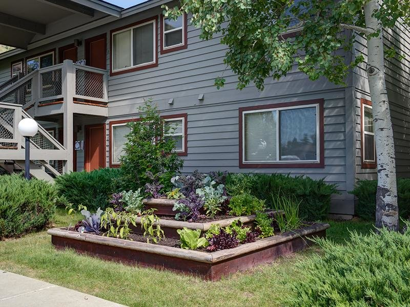 Community Garden | Aspen Meadows Apartments