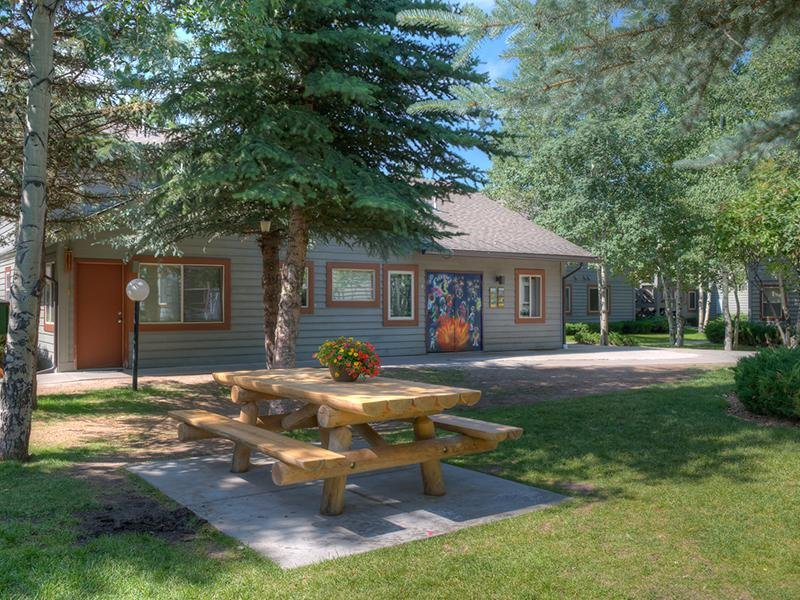 Picnic Area | Aspen Meadows Apartments