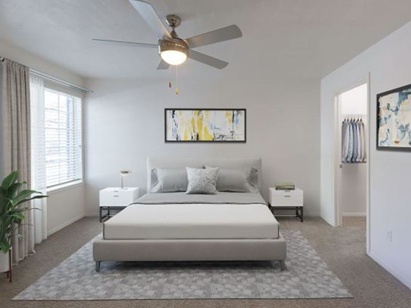 Master Room | Woodgate Apartments