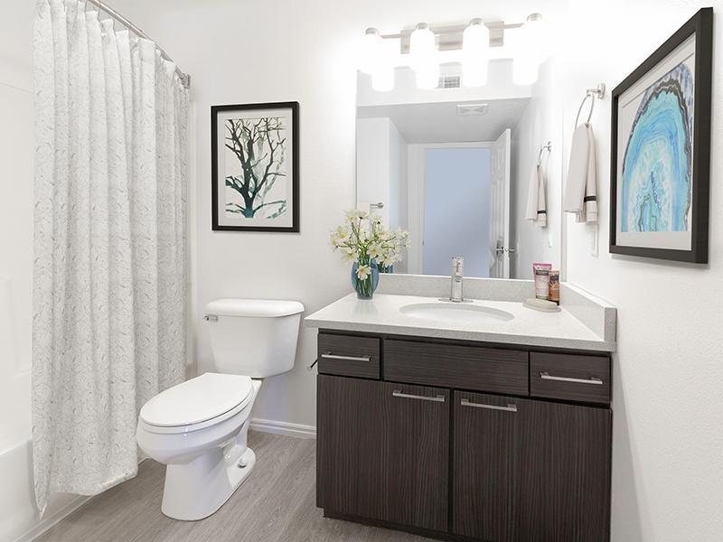 Bathroom   Woodgate Apartments