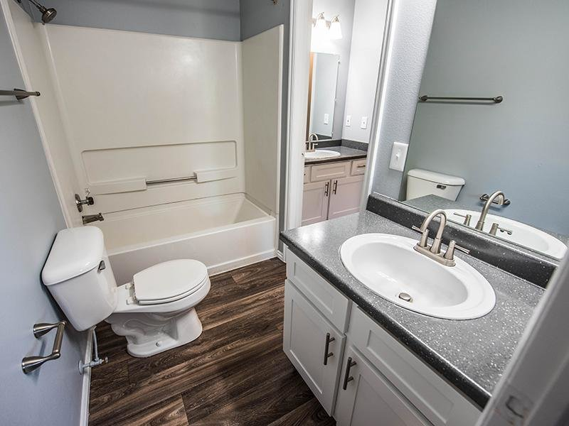 Sink and Shower | Hidden Cove Apartments