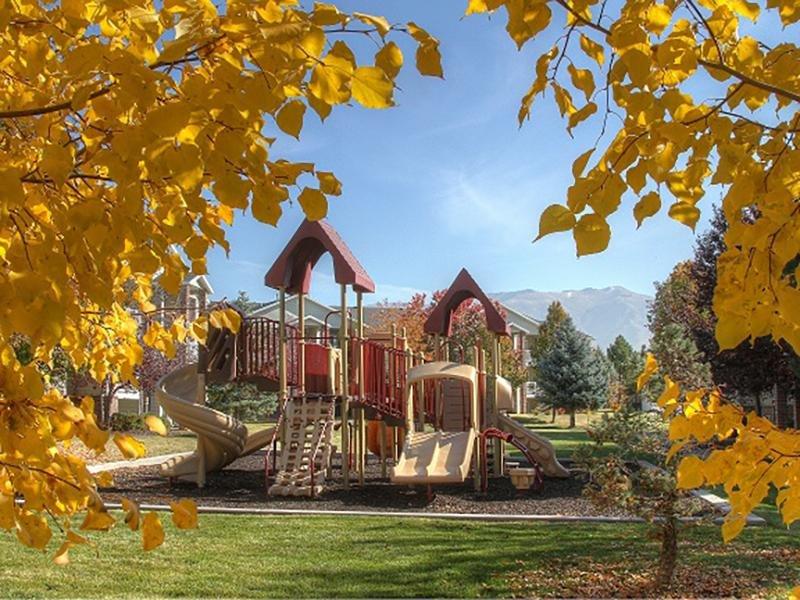 Playground | Hidden Cove