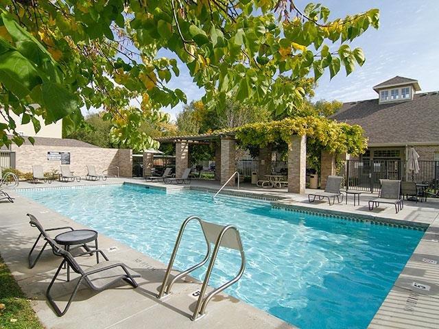 Swimming Pool | Preston Hollow