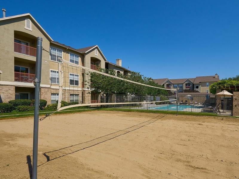 Volleyball Court| Preston Hollow