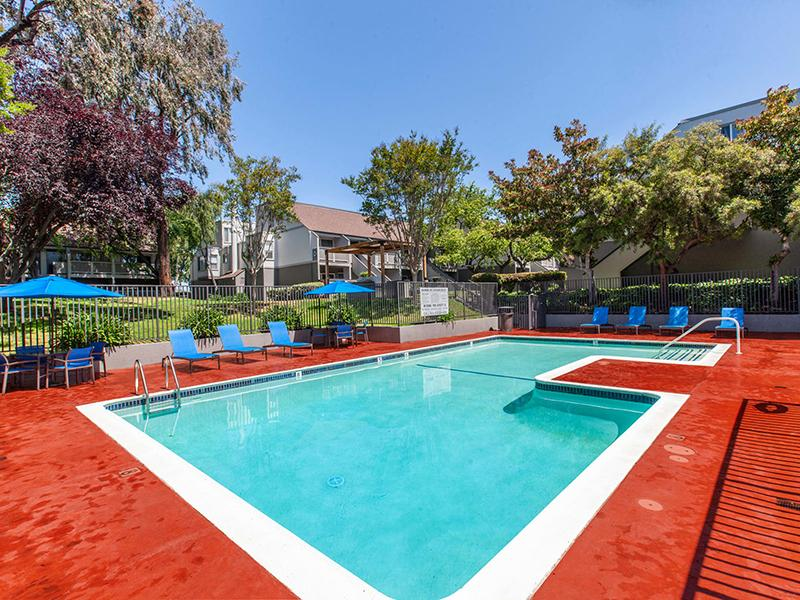 Swimming Pool | The Timbers Apartments in Hayward, CA