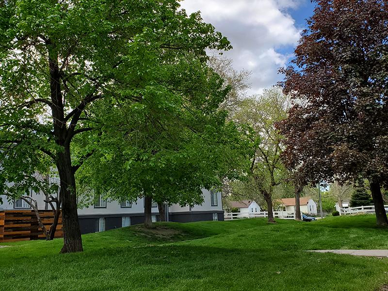 Lush Landscaping | Downtown West Apartments