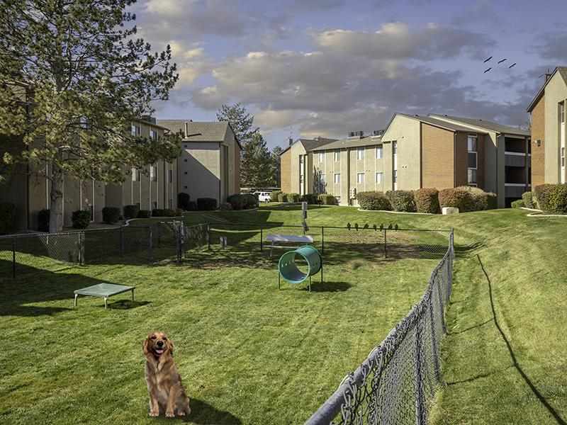 Pet Park | Fox Creek Apartments