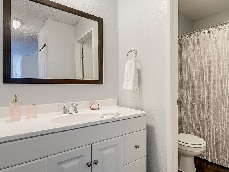 Bathroom   SeaBreeze Apartment Homes