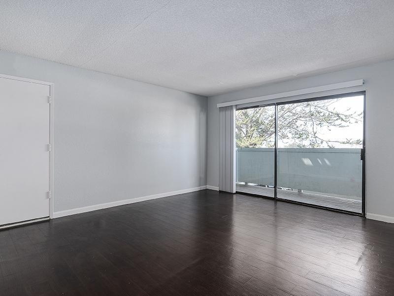 Living Room   SeaBreeze Apartment Homes