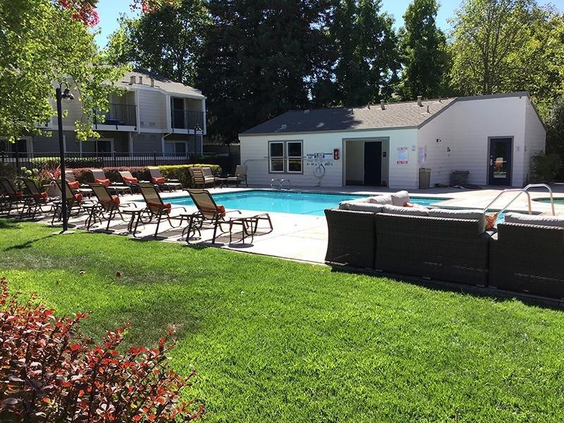 Swimming Pool | Vineyard Garden