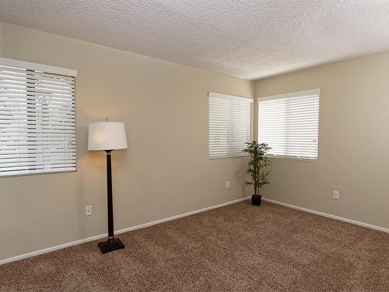 New Carpet | The Springs