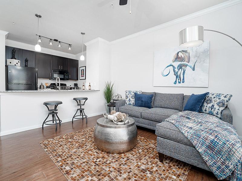 Living Room | Cascadia Apartments in San Antonio, TX