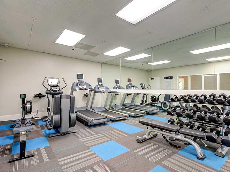 Gym   Elevate Long Beach