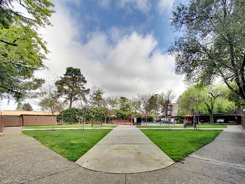 Walking Path | Sunset Pines Apartments in Concord, CA