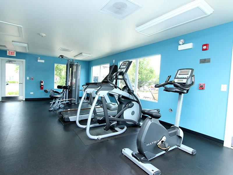 Gym - Fitness Center