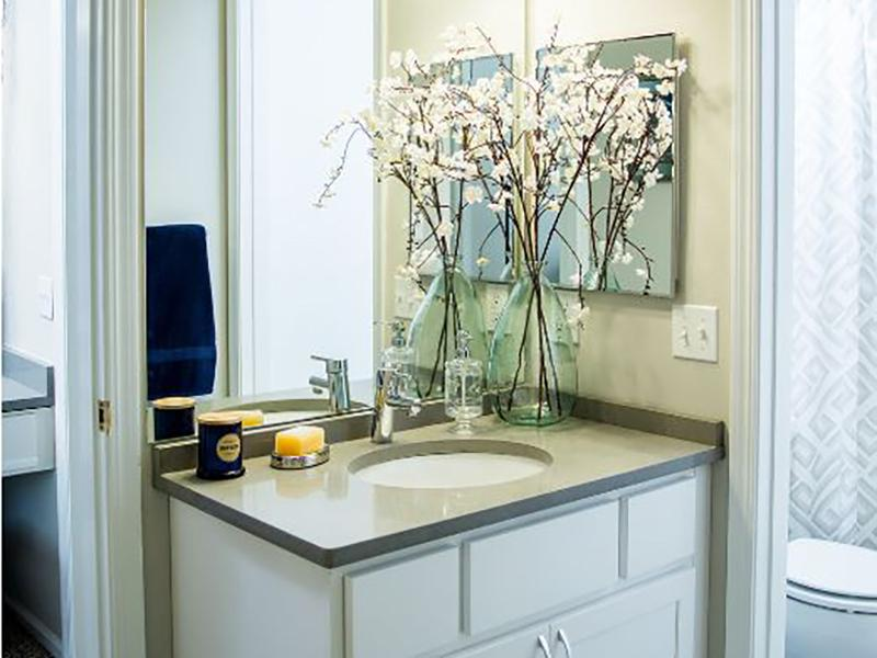 Bathroom | The Arbors at Brookdale Apartments in Naperville,