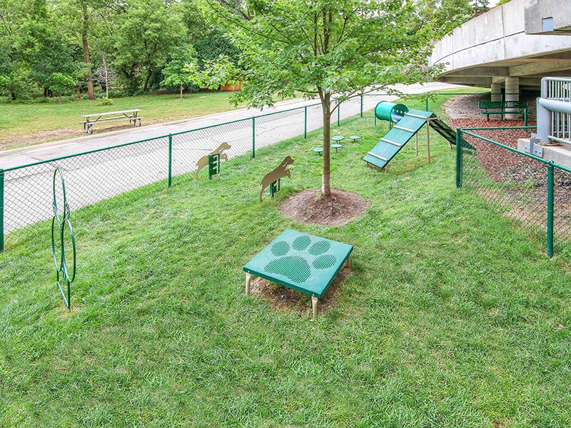 Pet Park | Kingston Pointe