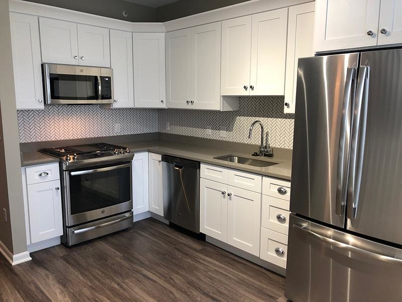 Upgraded Kitchen | River Run at Naperville