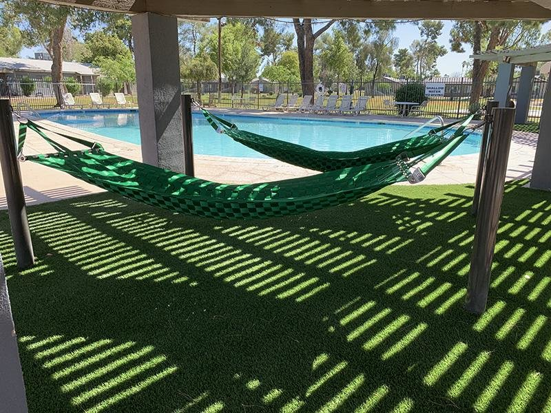 Pool Side Hammocks | Park Shadows