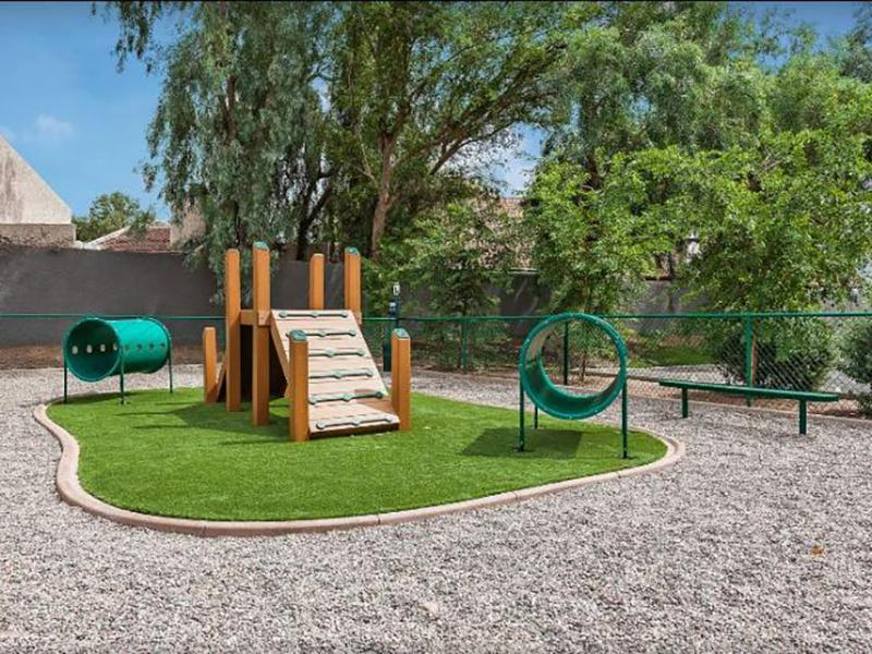 Dog Park | Apartments in Tempe, AZ