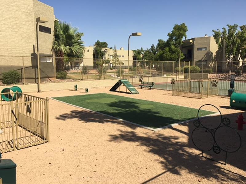 Dog Park | Apartments in Mesa, AZ