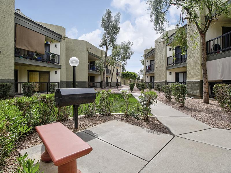 Courtyard | Dana Park Apartments