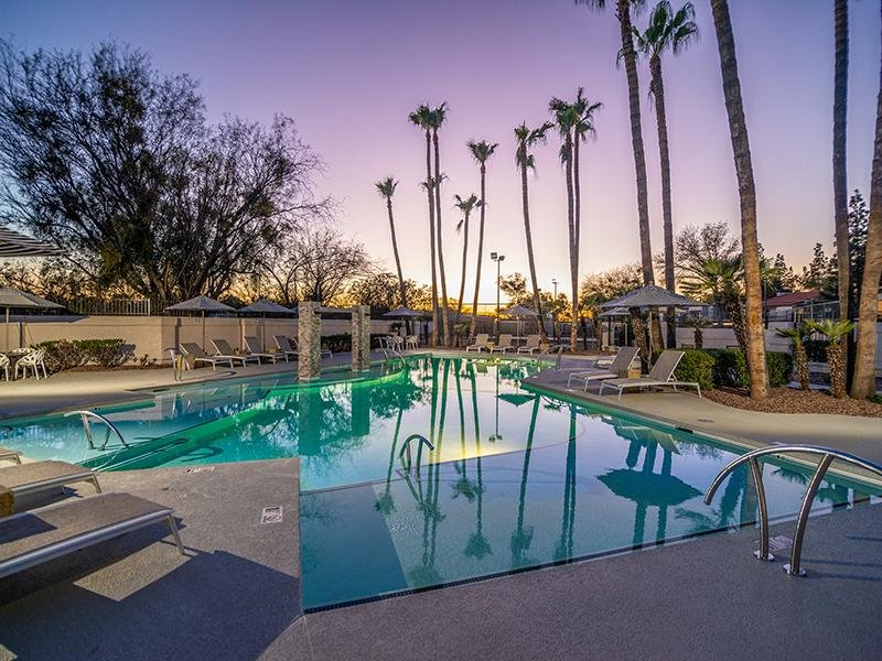 Swimming Pool With Palm Trees | Entrada Apartments in Tucson AZ