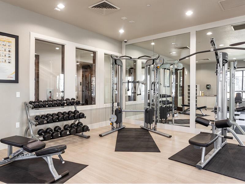Fitness Center | Elevation Luxury