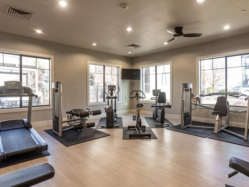Gym | Elevation Luxury