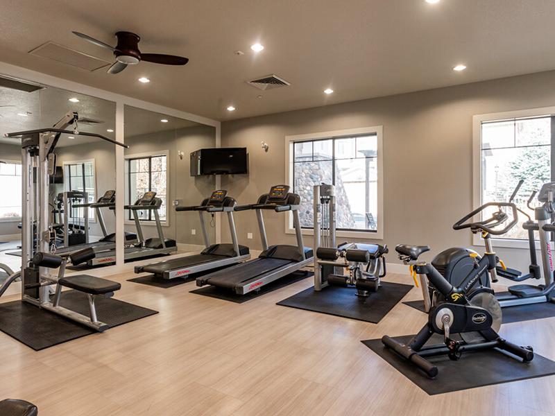 Cardio Center | Elevation Luxury