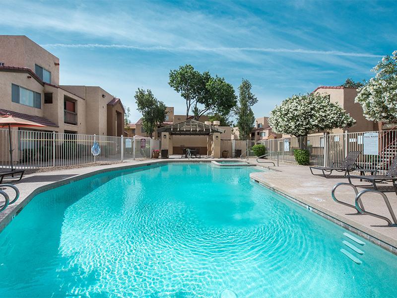 Pool | Ventana Palms
