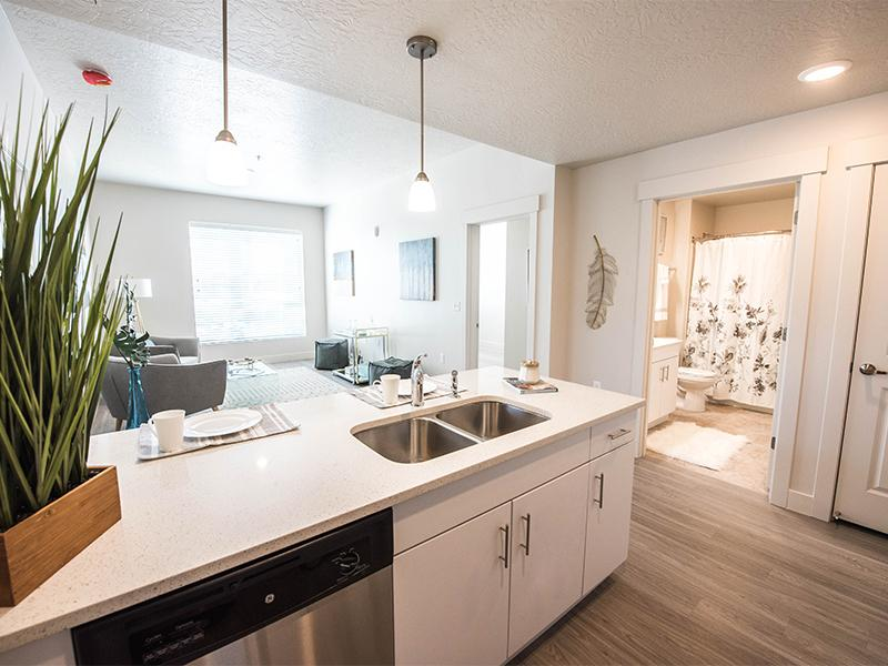Renovated Kitchen | District North