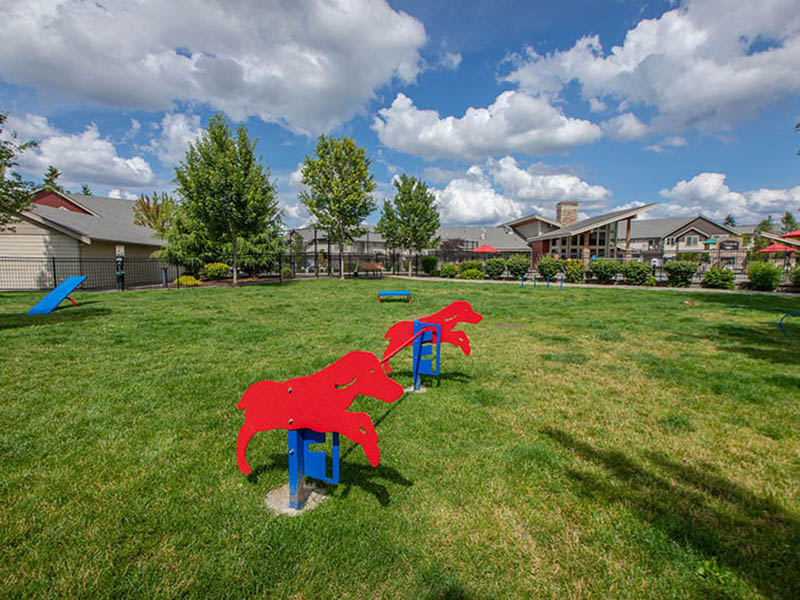 Dog Park | The Outlook Apartments in Graham, WA