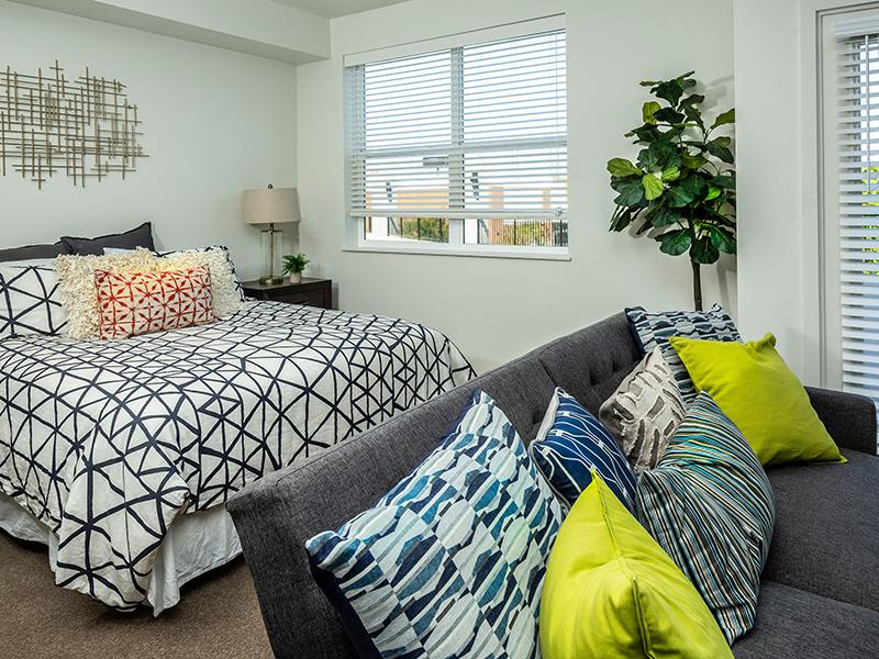 Open Layout | Paxton 365 Apartments