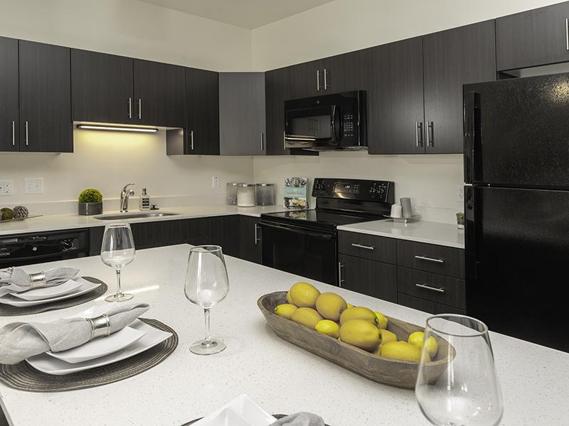 Model Kitchen | Paxton 365 Apartments