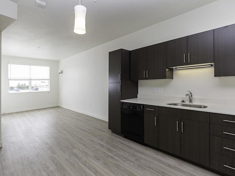 Beautifully Finished Cabinets | Paxton 365 Apartments