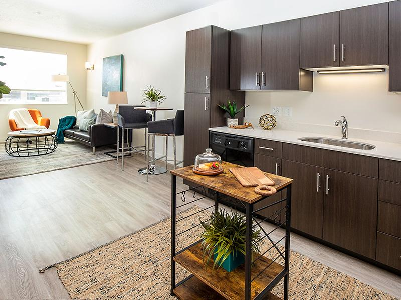 Kitchen & Living Room  | Paxton 365 Apartments