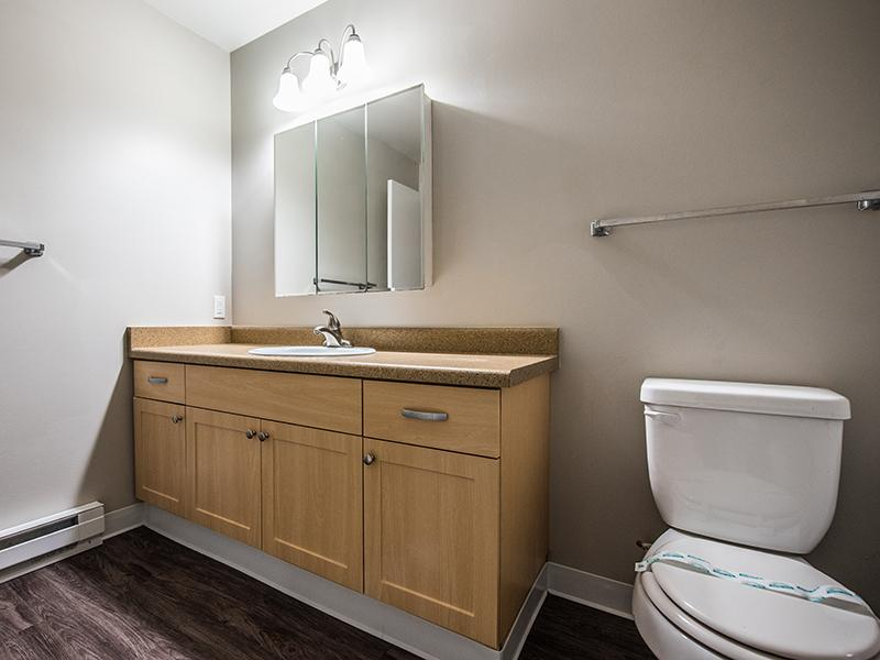 Apartment Bathroom | Sheridan Beach Terrace In Lake Forest Park WA