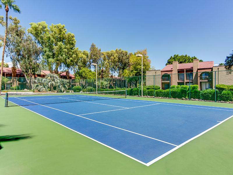 Tennis Court - Lifetime Activities - La Privada