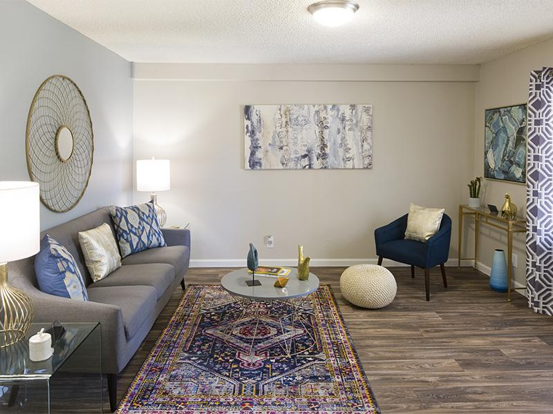 Spacious Living Rooms With Modern Amenities | Spain Gardens Apartments