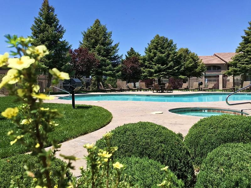 Swimming Pool | Allegro at Tanoan Albuquerque Apartments