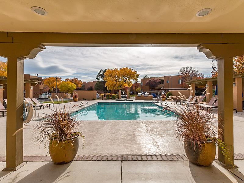 Swimming Pool | San Miguel Del Bosque