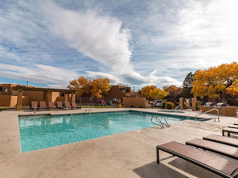 Sparkling Swimming Pool | San Miguel Del Bosque