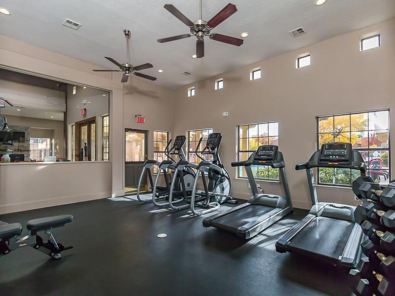 Fitness Center | San Miguel Del Bosque