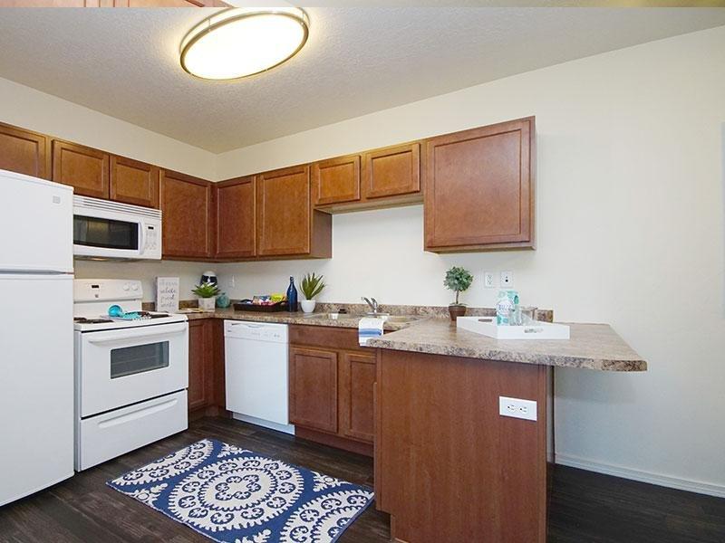 Kitchen - Microwave & Refrigerator