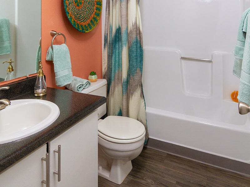 Bathroom | Seasons at Pebble Creek