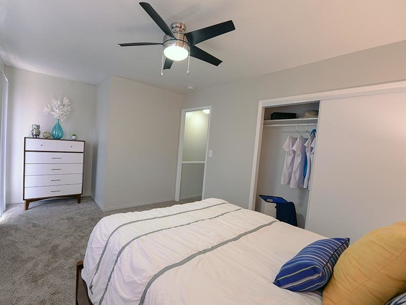 Newly Renovated Bedrooms apartment
