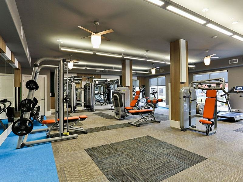 Gym - Apartments in Tempe with a Gym - Hyve
