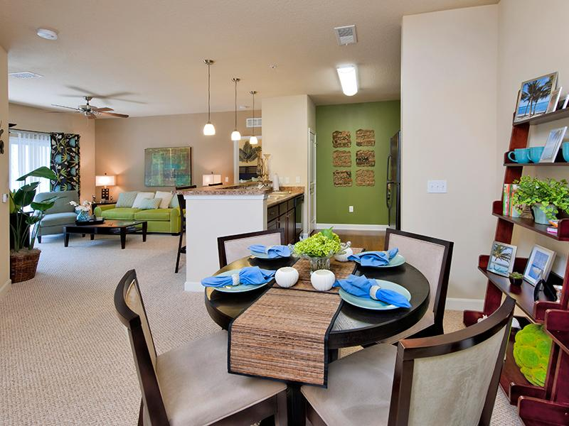 Apartments With Open Dining and Living Area | Hayden Commons Townhouses