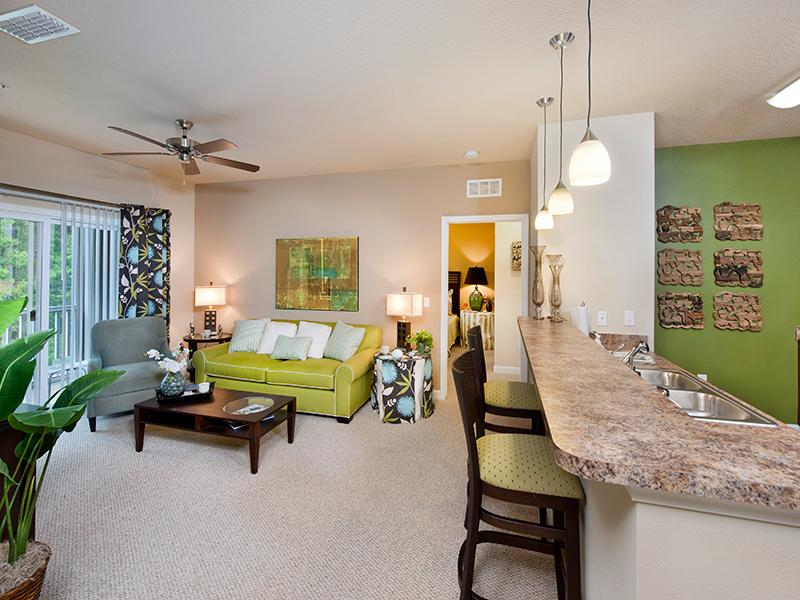 Open Living Room | The Park at Southwood Apartments